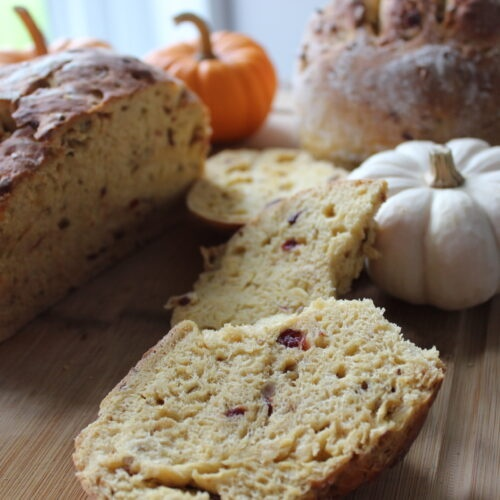 pumpkin bread with dried cranberries and sunflower seeds